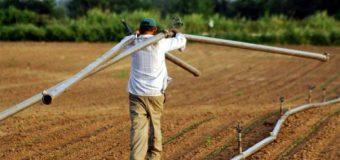 Σύσκεψη στο Υπουργείο Αγροτικής Ανάπτυξης για το καθεστώς εργασιακής σχέσης των εργατών γης – Τι αποφασίστηκε