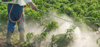Σύλλογος Παραλίας Λακκόπετρας: Ικανοποίηση για τη συνέχεια του προγράμματος καταπολέμησης των κουνουπιών