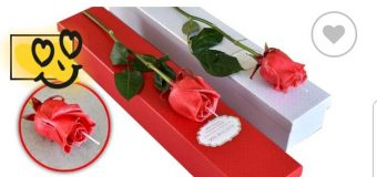 Αληθινό τριαντάφυλλο – λαμπάδα στο Μοναδικές Στιγμές και Όνειρα στην Κάτω Αχαΐα!