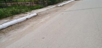 Περιβαλλοντικός Σύλλογος Ριόλου: Καθάρισαν και άσπρισαν το χωριό τους!